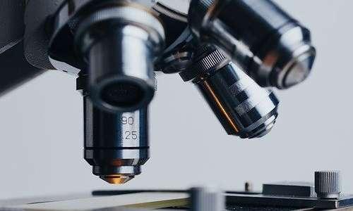 La ricerca sulla telomerasi ha tra i propri obiettivi quello di rallentare l'invecchiamento.