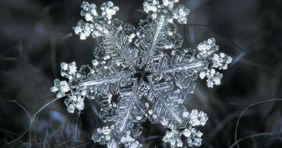 Cristalli di neve foto: ramificazioni da base esagonale