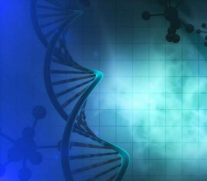 Le caspasi sono molecole che consentono alla comunità cellulare di sopravvivere
