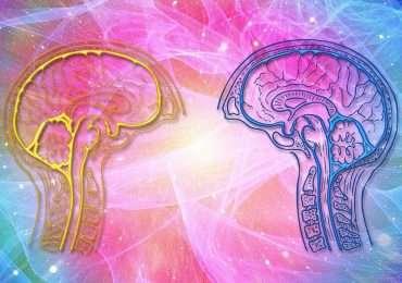 La teoria biosociale nasce per spiegare il disturbo borderline